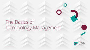 The Basics of Terminology Management